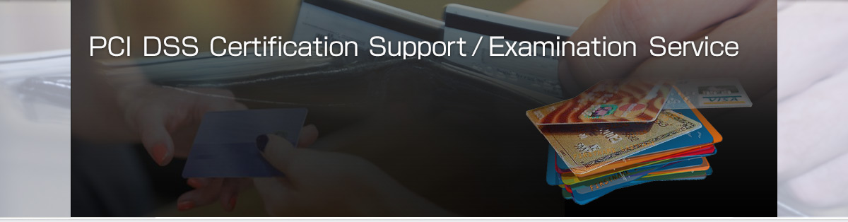 PCI DSS Authorization Support & Inspection Services